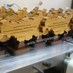 наградная-продукция-из-дерева---кубки-для-Прософт-от-Feeling-Wood
